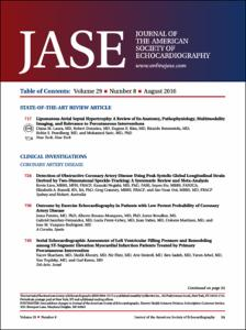 2016 JASE Volume 29 Issue 8 August (17).pdf.jpg